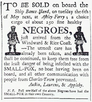 a reason why slavery developed in the american colonies was